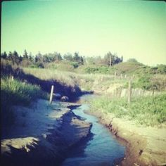 #camping #favoriteplace  hermit island, maine
