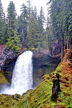 Sahalie Falls on the McKenzie River, Oregon