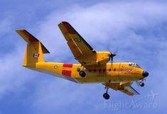 Photo of De Havilland Canada - FlightAware Military Aircraft, Airplanes, Fighter Jets, Transportation, Aviation, Sd, Buffalo, Blue, Planes