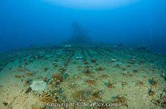 Flight Deck of Aircraft Carrier USS Saratoga, Marshall Islands, Bikini Atoll, Micronesia, Pacific Ocean