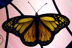 Hand painted and leaded butterfly stained glass  Particolare di farfalla dipinta su vetro con grisaglia e smalti Flying Insects, Stained Glass Panels, Beautiful Butterflies, Moth, Bugs, Artsy, Butterfly, Hand Painted, Dragonflies