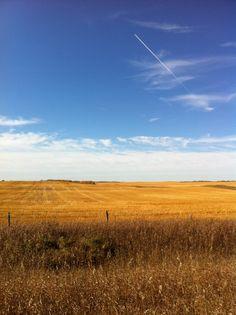 Wainwright Alberta :D (Thanksgiving 2011)