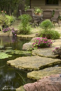 Backyard Fish Pond with Stepping Stones