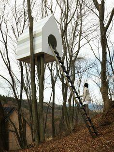condomínio para pássaros e casinha para humanos  2 www.sac@bosso.com.br