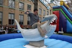 mechanical shark-yes!  a must at any shark party I throw!