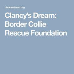 Clancy's Dream: Border Collie Rescue Foundation