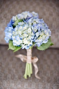 blue hydrangea bouquet with pops of white (roses, spray roses) white satin handle