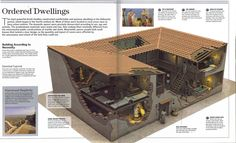 Ancient Greek house