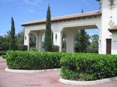 Clusia G. hedging. (the lower evergreen planting, Taller plantings are Italian Cypress.) Clusia G. in our opinion is one of the top hedge plantings in S. Florida for thickness, durability, longevity. A hardy planting best kept at 4' or taller. Can provide tall privacy if allowed to grow. Universal Landscape, Inc. www.universaldevgroup.com Clusia, Tropical Landscaping, Hedges, Evergreen, Landscape Design, Outdoor Gardens, Pergola, New Homes, Florida