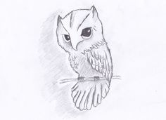 How to Draw an Owl in 7 Simple Steps | Step-by-Step Lesson