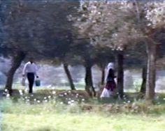 "The Film Sufi: ""Through the Olive Trees"" - Abbas Kiarostami (1994)"