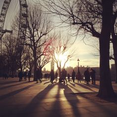Late winter sunlight casts shadows on the Southbank of the Thames 9°C I 48°F #BurberryWeather