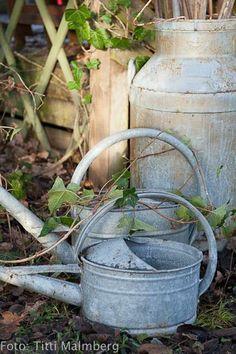Watering cans Galvinized zinc Water Garden, Garden Pots, Galvanized Buckets, Galvanized Metal, Vintage Gardening, Rustic Gardens, My Secret Garden, Vintage Industrial, Industrial Style