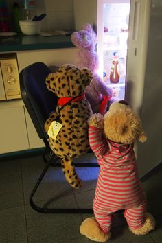 There were no 'grizzly' bears at Coffs Harbour Library's National Pyjama Day Storytime and Teddy Sleepover – everyone was having too much fun!  It was when all the humans had gone home for the night that the fun really started and the teddies got to have their very own Sleepover…