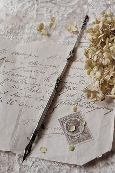Old Letters, Princess Aesthetic, Handwritten Letters, Dip Pen, Lost Art, Letter Writing, Writing Table, Writing Instruments, Stationery