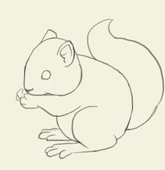 How to draw squirrel. Learn to draw a cute bunny step by step images along with easy to follow instruction. Like other rodents, squirrels have four front teeth that never stop growing so they don't wear down from the constant gnawing. Tree squirrels are the types most commonly recognized, often seen gracefully scampering and leaping …