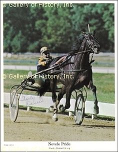 """A """"Good"""" man! He knew horses loved female grooms... I worked for him for years... R.I.P. Stanley Dancer... You are loved and missed..."""
