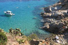 Un mare denso di sfumature turchesi. Quando un posto rapisce gli occhi, il cuore e l'anima. Isola del Giglio.