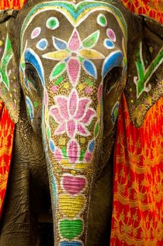 Beautiful Designs in forehead of Elephant