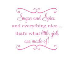 Sugar and Spice and Everything Nice Vinyl by openheartcreations, $35.00