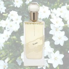 Sexy Summer Perfumes - Chantecaille, Tiare ($175). Tahitian gardenias, with their rounded, lush blooms, are hands down the sexiest flowers of summer. Combine them with unbelievably voluptuous notes of lily of the valley, rose, jasmine and vanilla and you have Tiare.