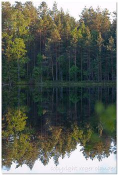 National park Espoo,Finland