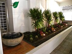 Diseños del jardín en zonas tropicales: Patio Interior