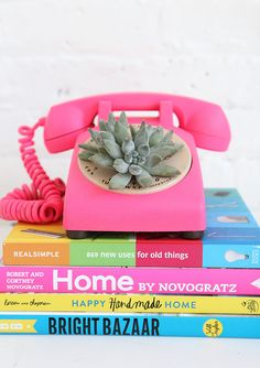 Succulent Phone Plan