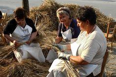 Ielsi Molise - la devozione per Sant'Anna festa del grano    #TuscanyAgriturismoGiratola