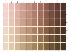 COUV L'Oréal colour chart of sixty-six skin tones
