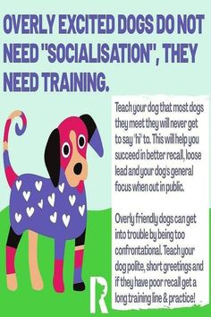 Excited Dog, Feeling Helpless, Free Dogs, Listening To You, Training Your Dog, Say Hi, Dog Friends, Behavior, Improve Yourself