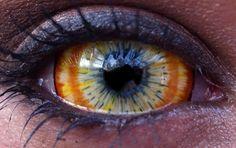 Resultado de imagem para eye