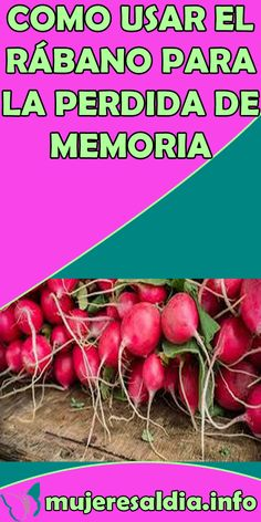 Keeping Healthy, Margarita, Vitamins, Medicine, Spices, Herbs, Vegetables, Nature, Food
