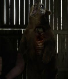 Zombie Bear Ass Fucked
