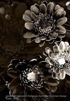 Moonlight Meadow wallpaper from Ellie Cashman Design in Black