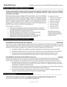 Advertising Account Executive Resume Inspiration Nurse Resume Sample Vice President Business Development Professional .