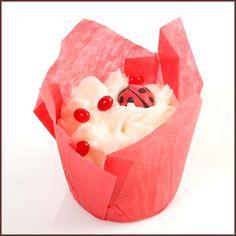 Ladybirds Kiss Bath Tulip £3.25 each