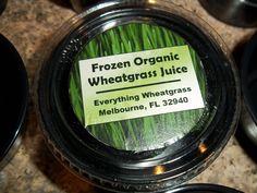 Frozen organic wheatgrass juice    $2 per ounce      Everything Wheatgrass, Melbourne, FL  www.everythingwheatgrass.com