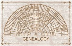 Family Tree - 7 Generation Personalized Custom Half Wheel Genealogy Chart
