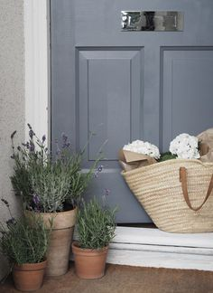 Slate grey front door with terracotta lavender pots. Spruce up your entrance and give it some kerb appeal with a few small, easy-to-do changes, like painting the front door or adding a few fresh plants Cottage Front Doors, Grey Front Doors, Beautiful Front Doors, Front Door Entrance, Front Door Colors, Front Door Decor, Entrance Ideas, Doorway, Feng Shui