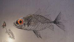 Thomas Hill: Hasa Hasa Fish 2003 hasahasa.jpg