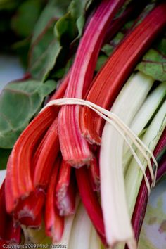 Delicious Obsessions: How To Freeze Fresh Swiss Chard | www.deliciousobsessions.com