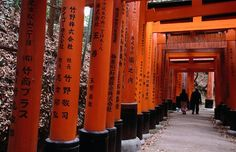 Fushimi Inari-Taisha, Kyoto. The entire complex, consisting of five shrines, sprawls across the wooded slopes of Inari-san. A pathway wanders 4km up the mountain and is lined with dozens of atmospheric sub-shrines.  Fushimi Inari was dedicated to the gods of rice and sake by the Hata family in the 8th century.