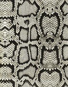 Black and White Snakeskin