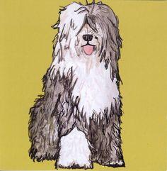 old english sheepdog c...