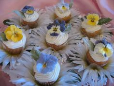 Crystallized Flower Company  A Leader & Innovator of Organically Grown, Edible, Candied Flowers!