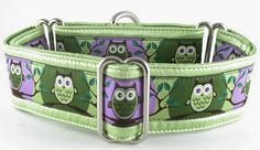 What a Hoot!: The Regal Hound - Unique fashionable designer martingale and buckle dog collars, from cute to fancy, humane and soft choke for all canine breeds