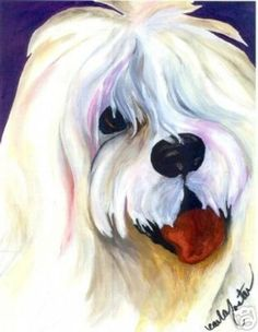 Coton de Tulear Throw Pillow with Original Art Image (07/27/2007)