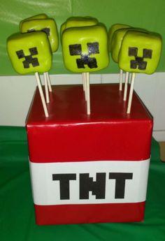 Meghans Minecraft Birthday Bash!!! | CatchMyParty.com