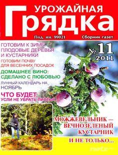 Урожайная грядка №11 (ноябрь 2011)